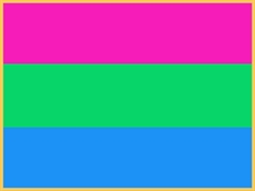Pin: Polysexual Pride Flag