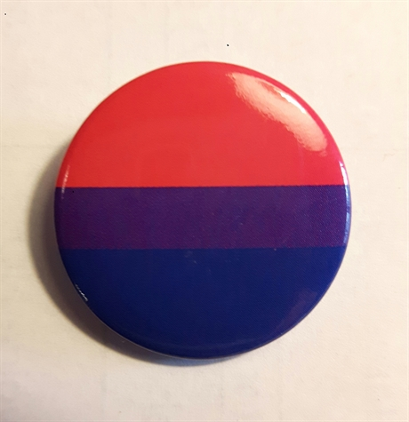 Button 25mm: BI Pride Flag
