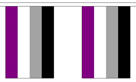 Asexual Pride Bunting Flag