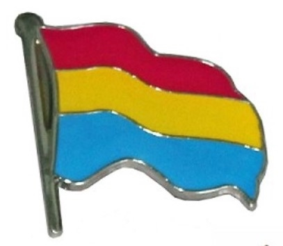 Pansexual Wavy Flag Label Pin