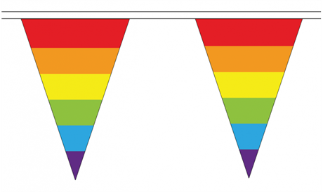 Rainbow Triangle Bunting 5 meter