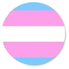 Button 32mm: Trans Pride